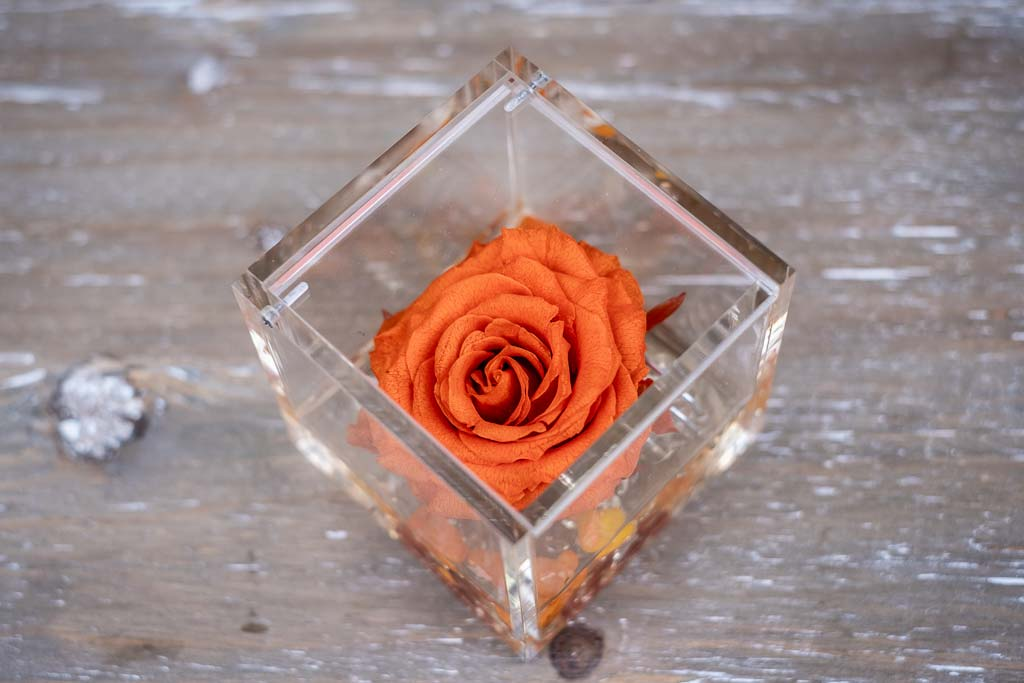 Flower Cube Rosa Arancione