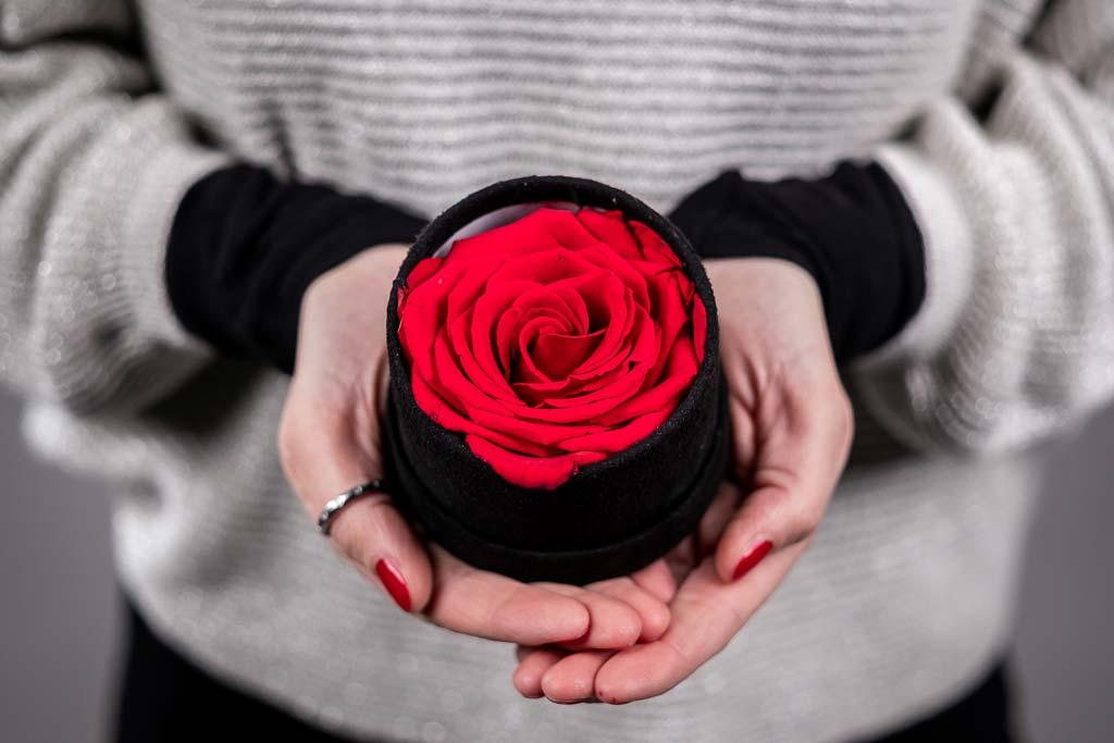Scatola Cilindro In Velluto Con Rosa Stabilizzata